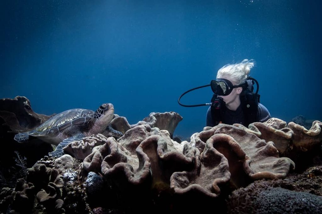 Awesome Scuba Diving Hacks for Beginners You've Never Heard Before