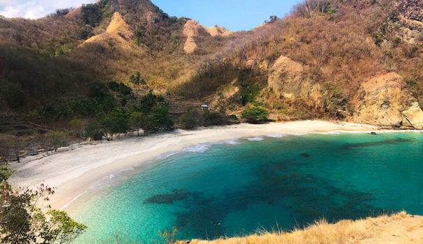 komodo island tour packages