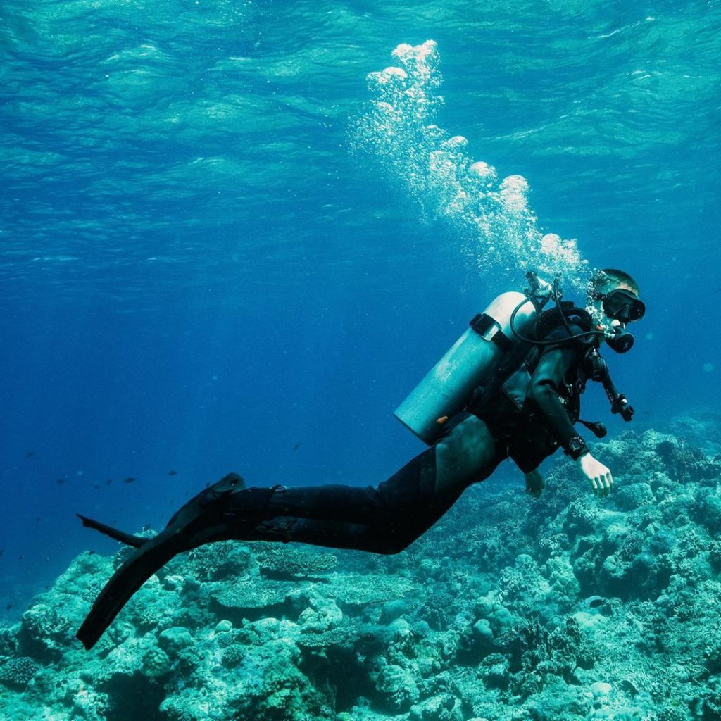 Flores Sea Safari Tips for Dive and Cruise