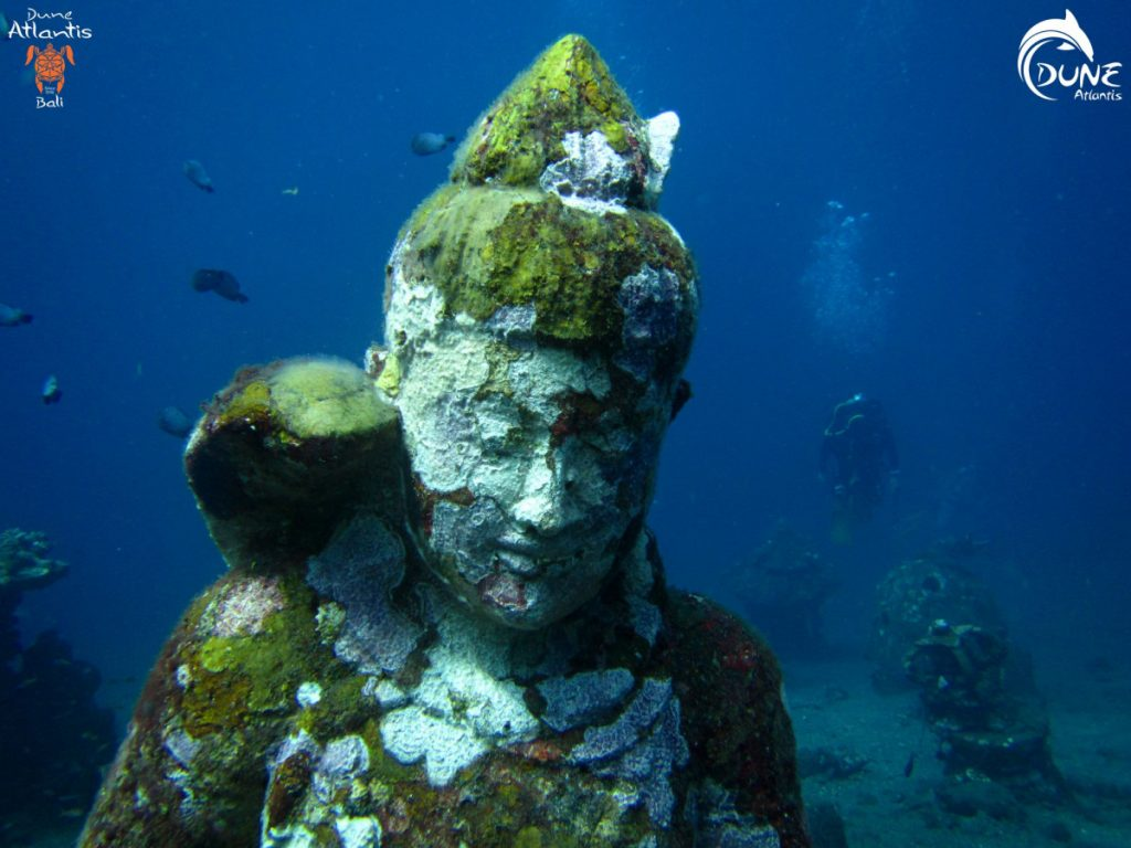 5 Tips to Choose Bali Diving Spots for Next Vacation