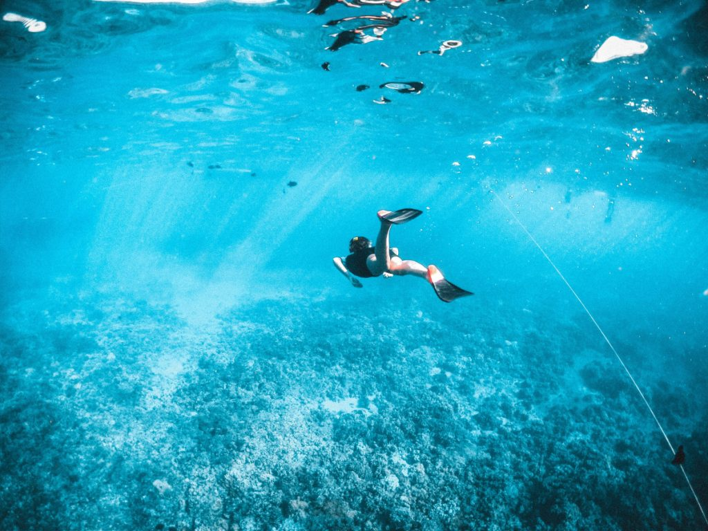 best snorkeling in indonesia