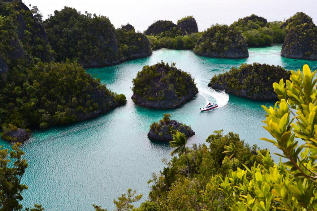 exploring the beauty of papua with raja ampat liveaboard